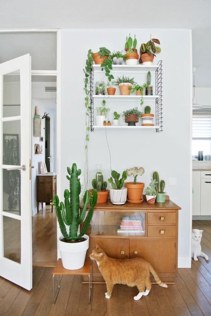 wohndeko-ideen-pflanzenundblumenimwohnzimmer-katzenzuhause-pflanzen-regal