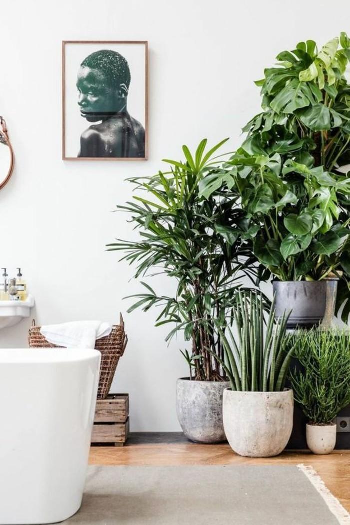 Wohnzimmer dekor pflanzen for Wohnzimmer pflanzen