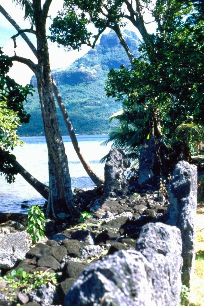 urlaub-auf-bora-bora-marae-fare-opu-die-sehenswürdigkeiten-von-bora-bora-insel-schöne-natur-bäume