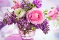 Blumenversand – den Alltag mit Farbe und Duft verschönern