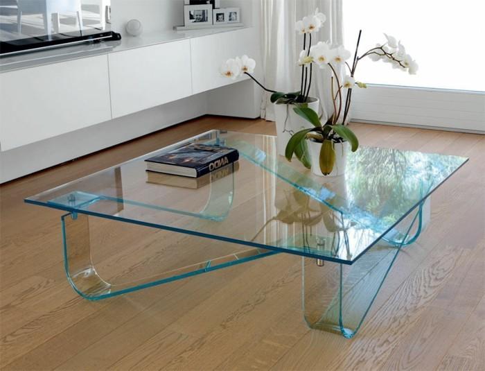 designer-couchtisch-aus-glas-in-quadratischer-form-modern-und-eleganz-tischdeko-pflanzen