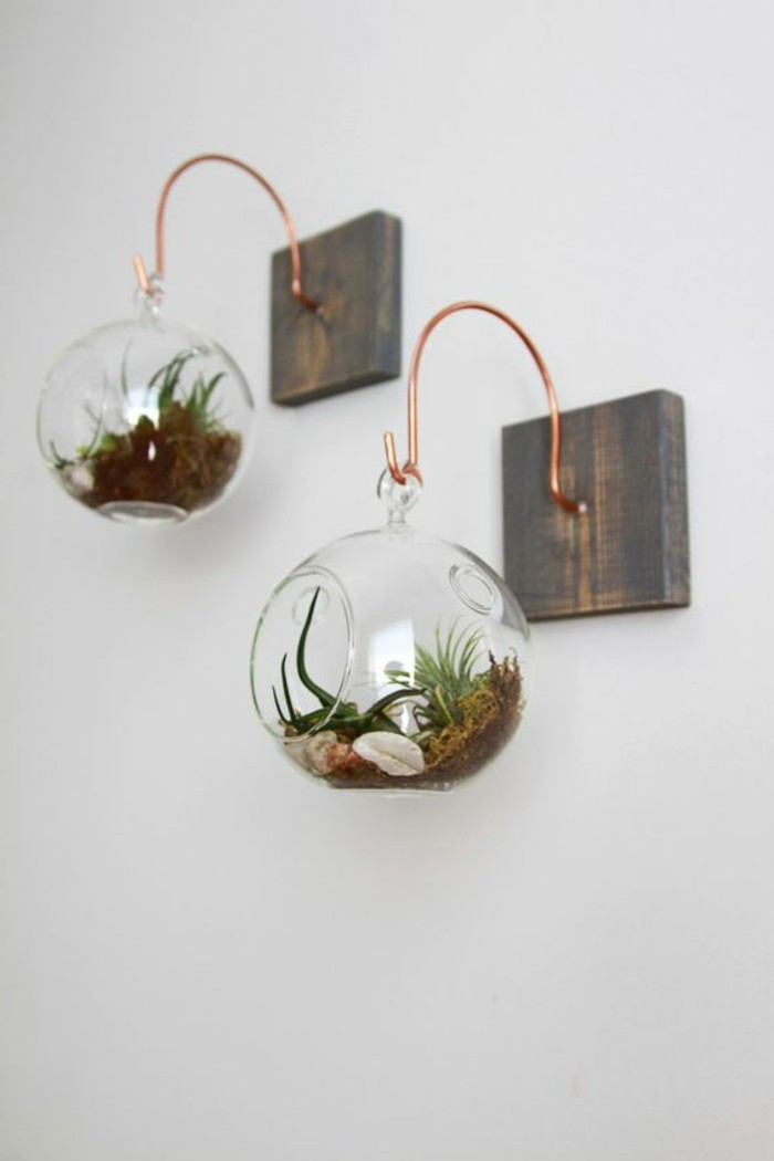 diy-deko-weise-wand-holz-glaser-mit-pflanzen-wandgestaltung