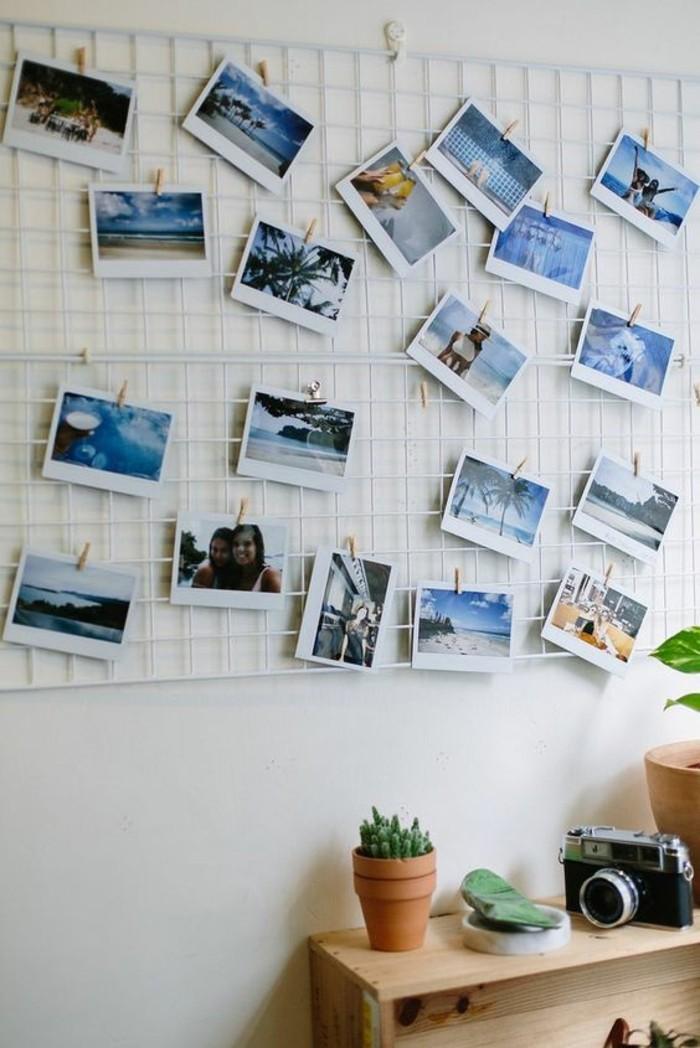 fotowand-ideen-fotos-pflanze-schrank-weise-wand