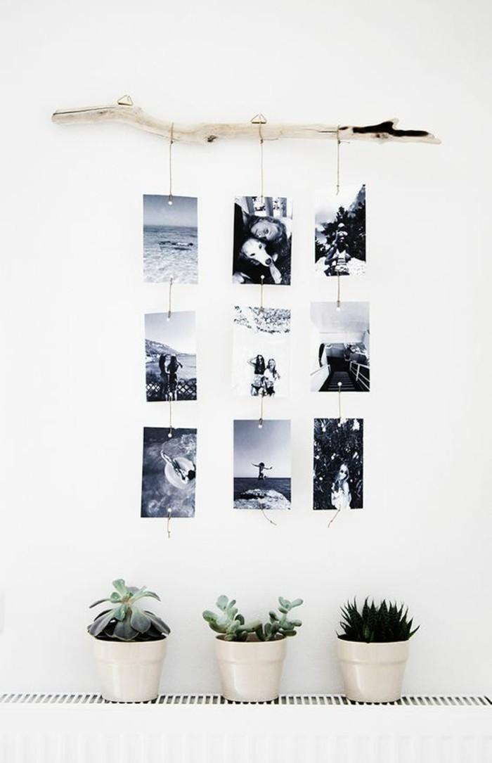 fotowand-selber-machen-ast-schwarz-weise-fotos-blumentopfe-pflanzen