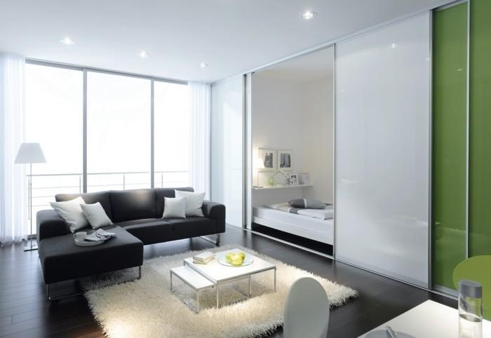 glasschiebetuer-zu-hause-gruen-schwarzes-sofa-weiss-teppich