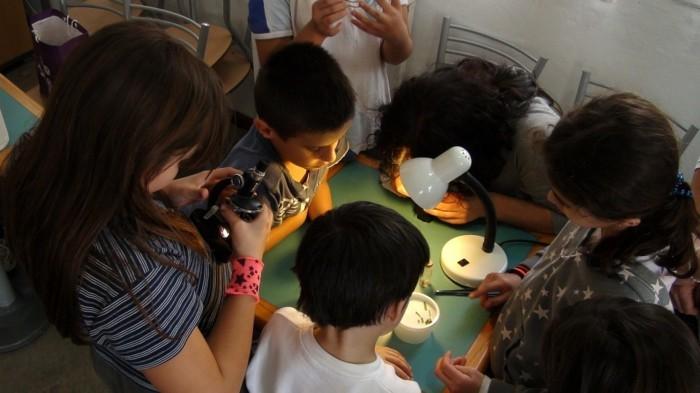 sieben kleine Kinder, die mit einem Mikroskop Experimente machen