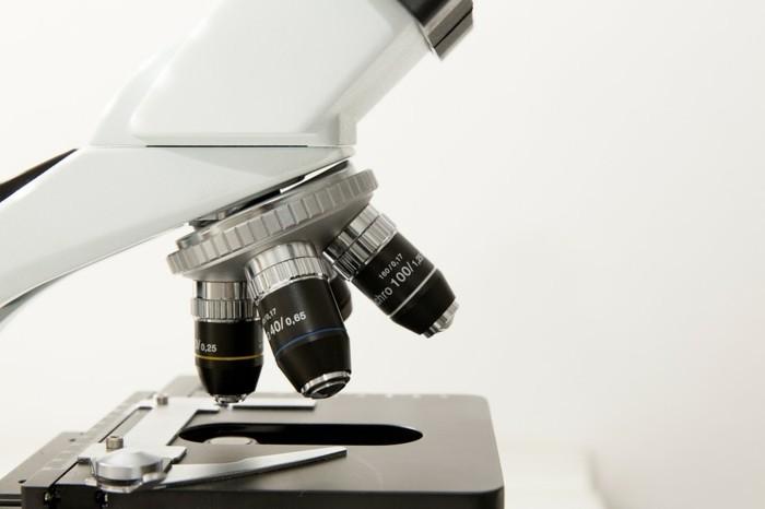 ein Mikroskop mit drei Okularen mit verschiedenen Zoom-Optionen