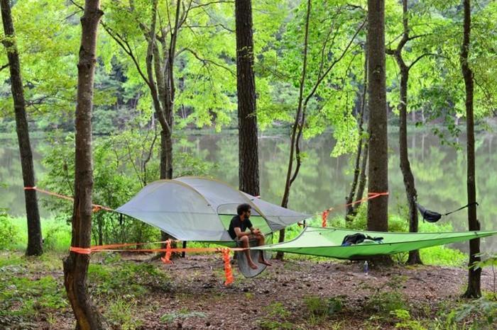 ein-weißes-und-ein-grünes-campingzelt-in-dem-wilden-wald