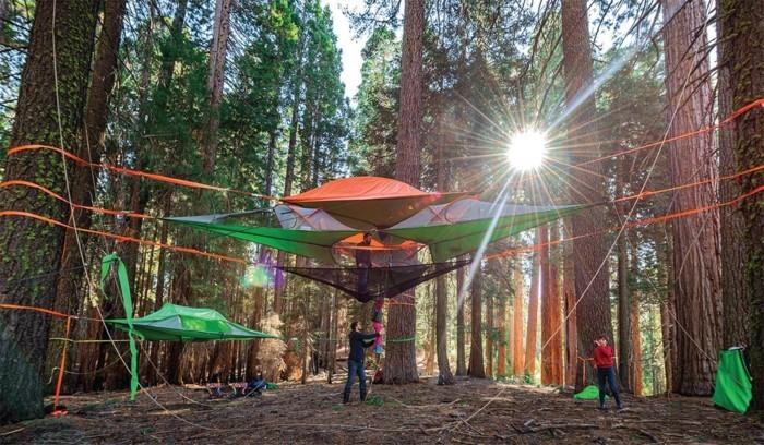 erholung-im-wald-hier-sind-orange-und-grüne-campingzelte-über-dem-boden