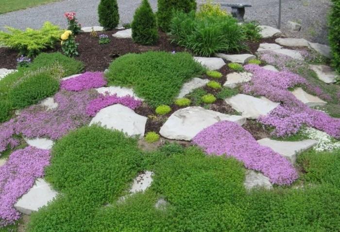 gartengestaltungsideen-mit-großen-weißen-steinen-lila-blümchen-kleine-kieferbäume