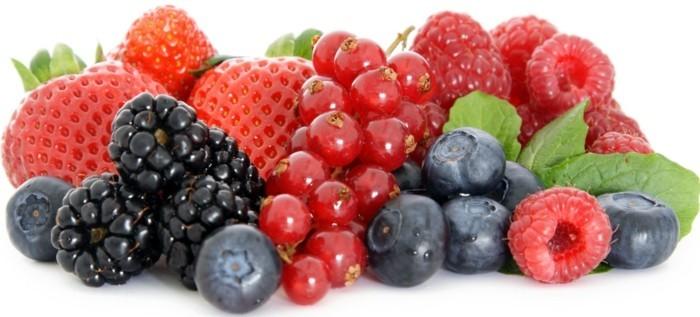 gefriergetrocknete-fruechte-gefriergetrocknete-erdbeeren-himbeeren-brombeeren