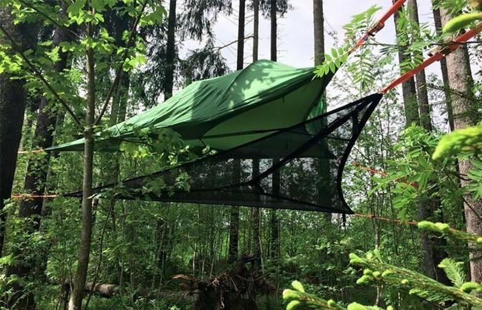 grünes-campingzelt-im-grünen-wald