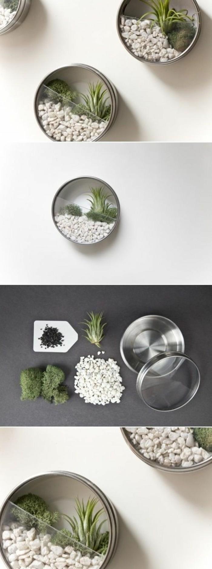 kreative-bastelideen-konservendosen-weisse-steinchen-gruene-pflanzen-wanddeko