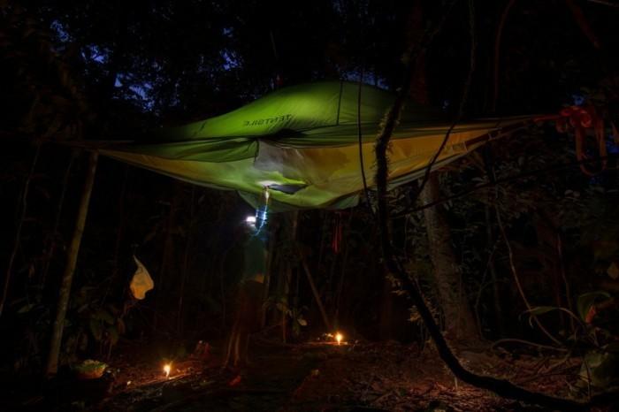 nacht-in-einem-grünen-baumzelt