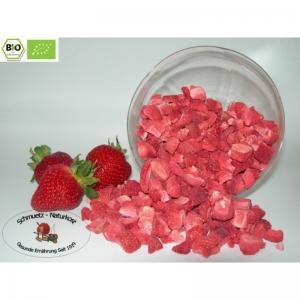 Gefriergetrocknete Bio Erdbeeren