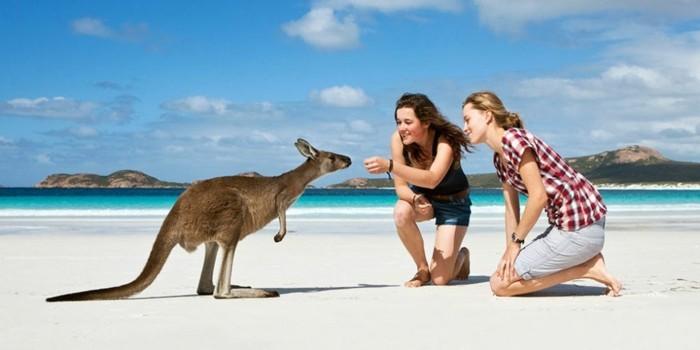 wellness-reise-nach-australlien-mit-freundinnen-kangaroo-fuettern-tolle-urlaubsidee