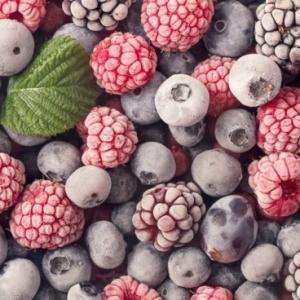 Gefriergetrocknete Früchte - die besten Hersteller