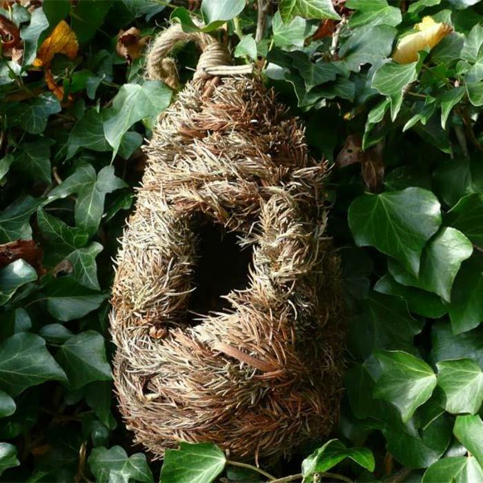 DIY Nistkasten: Vogelhaus aus Naturmaterialien bauen