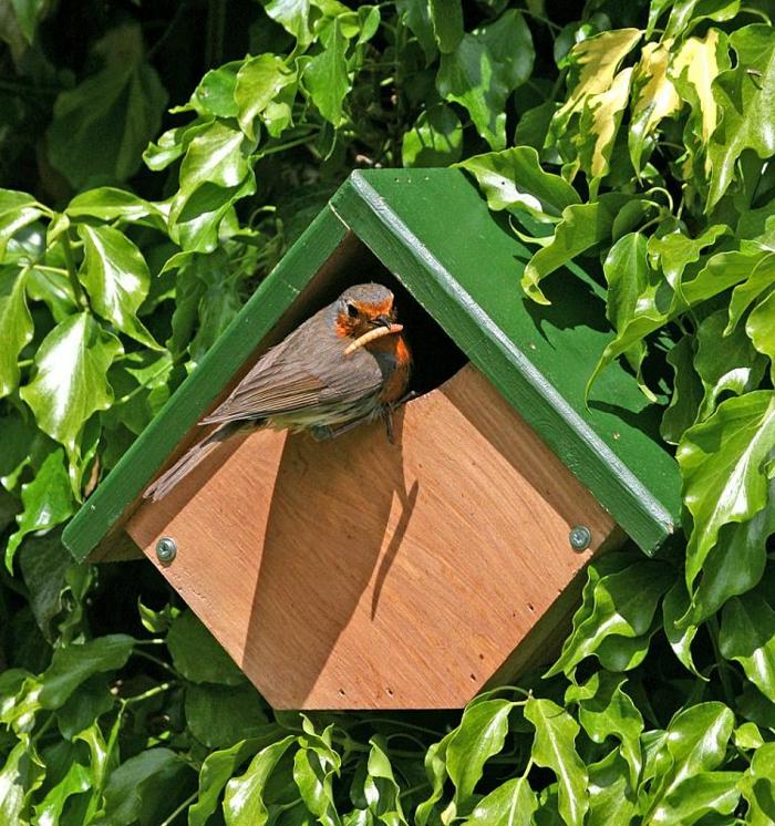 Vogelhaus für kleine Vögel selber bauen