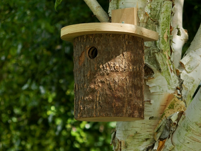 DIY Vogelhaus mit ganz simplem Design