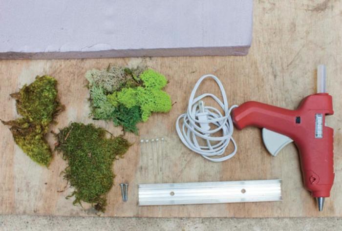 Moosbilder selber machen: Moos mit Silikonpistole kleben