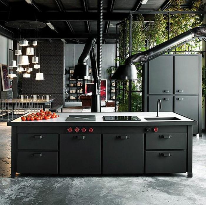 5küche-streichen-schwarz-steinboden-pflanzendeko-industrial-style-induktionsplatte-küchenschrank-schwarz-abzugshauben