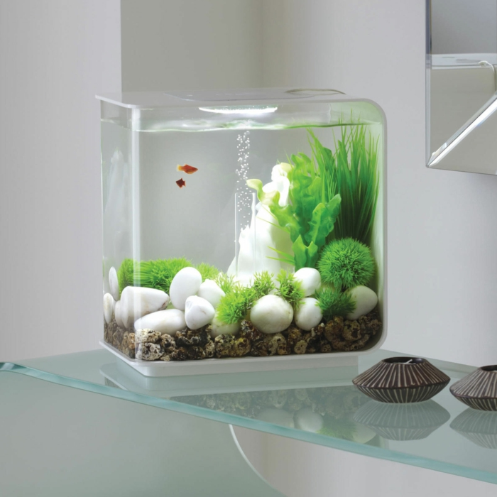 beautiful deko fur aquarium selber machen pictures - globexusa.us ... - Dekoration Aus Korallfarben Ideen
