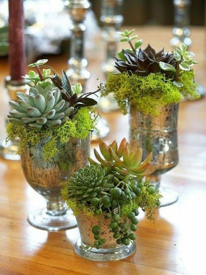 dekoideen-frühling-drei-Vasen-mit-pflanzen-und-moos