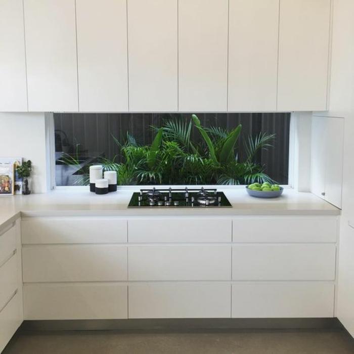 weiße küche mit glasrückwand mit grünen pflanzen als akzent