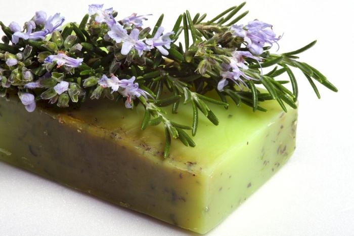 festes Shampoo mit Olivenöl und Rosmarinextrakt