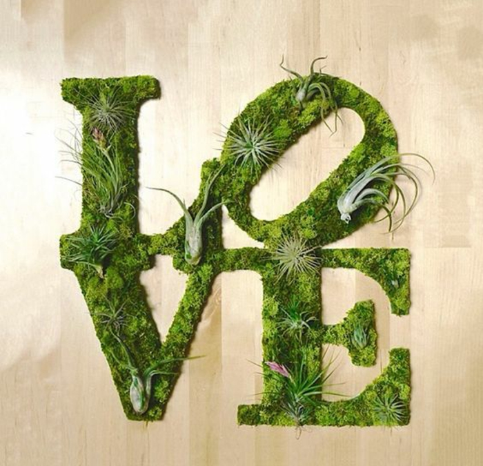 Moos Graffiti mit verschiedenen Sukkulenten: Love
