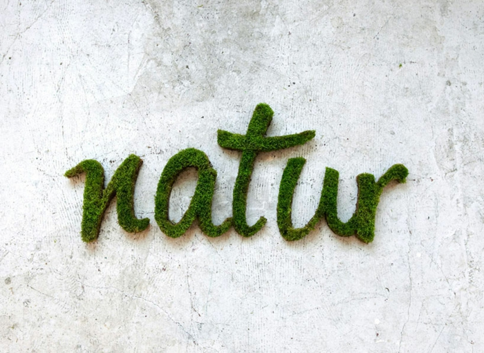Moos Graffiti: wo Beton Natur trifft