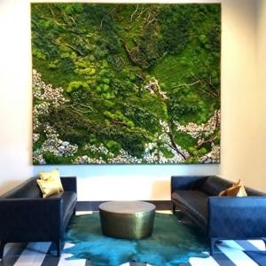 Moosbilder selber machen - erfrischen Sie Ihr Haus