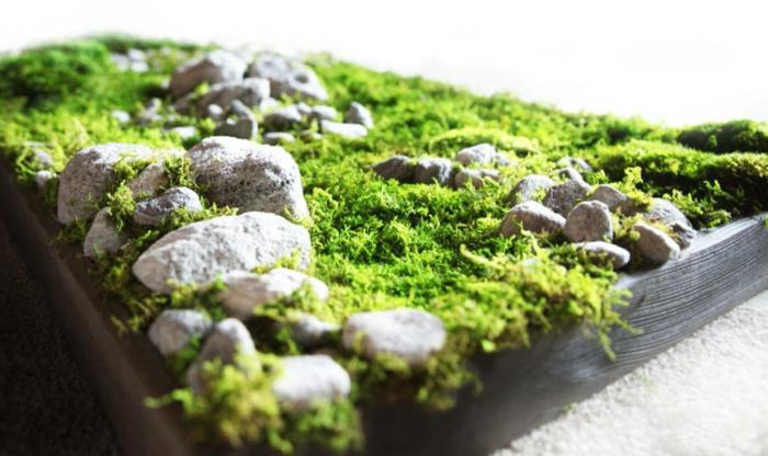 ein schönes Moosbild mit Steinen in verschiedener Größe