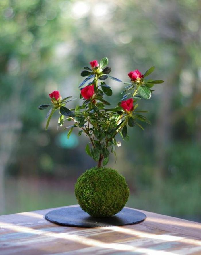 moosdeko-moos-und-rote-rosen-auf-schwarze-platte-draußen