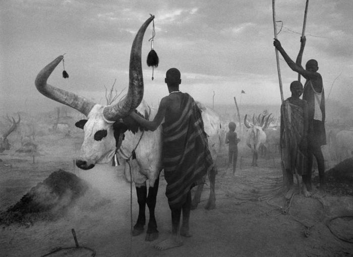 traurige-bilder-von-sebastiao-salgado-afrika