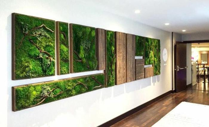 Moosbilder-Collage für den Flur zu Hause