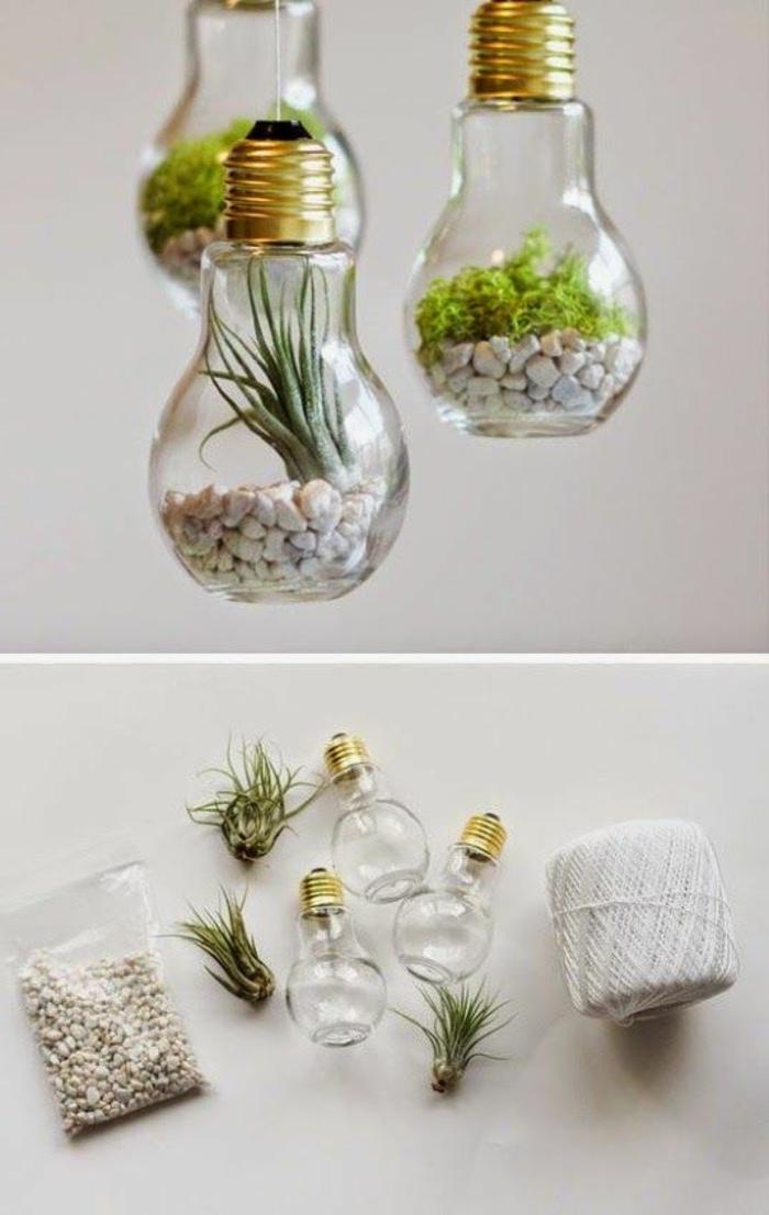 mini florarrien aus glühbirnen, weiße steinchen, grüne pflanzen