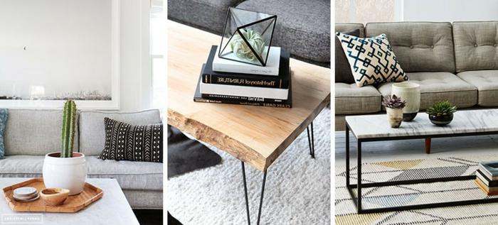 Wohnzimmer gestalten: drei wunderschöne Deko Ideen mit Sukkulenten verschiedener Art