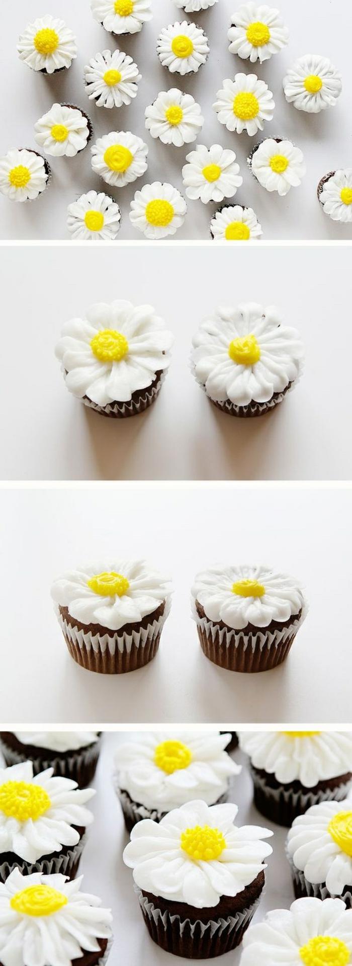 schoko-cupcakes dekoriert mit weißen gänsenblumen