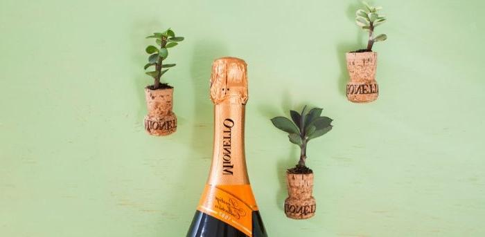 idee kreativ, champagner, korken flaschen deko aus kork kleine blumentöpfchen