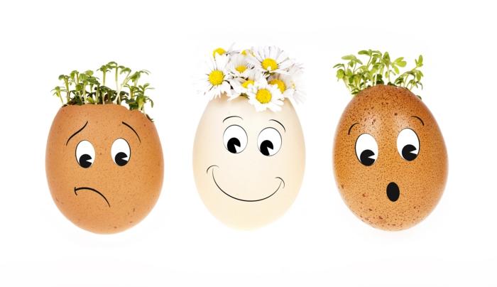 lustige Eier bemalen und mit Pflanzen schmücken, verschiedene Mienen