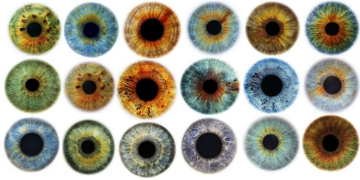 haben sie schon einmal solche unglaubliche augenfarben gesehen diese kann man treffen