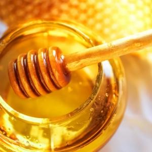 Die Honigschleuder: Ein unentbehrlicher Helfer bei der Herstellung vom flüssigen Gold