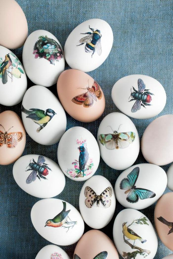 tattoo vorlagen kleine bunte tattoos auf die eier stellen schmetterling vogel bunte bilder auf weiß