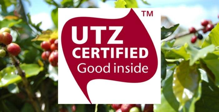 lebensmittelzertifikate, utz zertifikat, kakao, kaffee, bäume