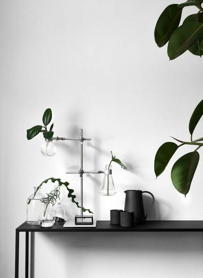 simple minimalistische Dekorationen mit Pflanzen und Glasvasen, schwarze Kaffeetassen, schwarze Kaffeekanne, schwarzer Tisch