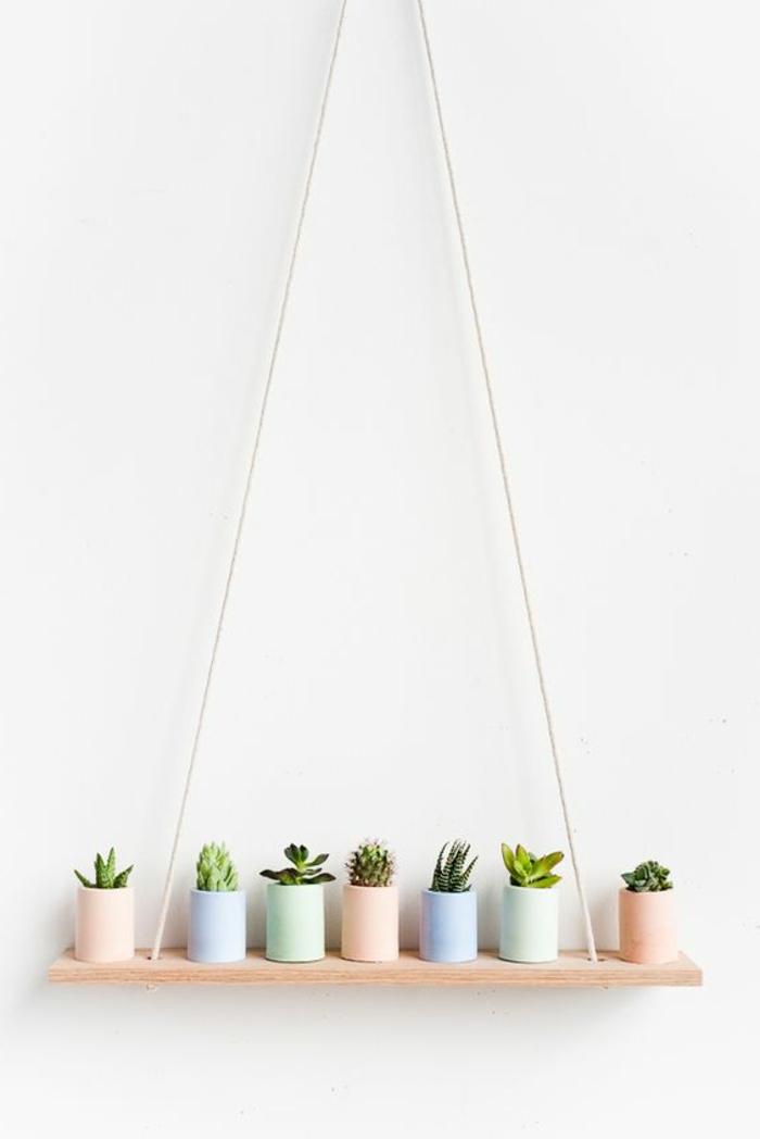 DIY Pflanzenregal aus einem Holzbrett und einem Seile, viele Kakteen und Sukkulenten