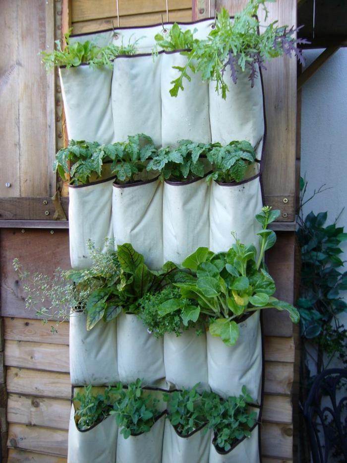 das Endprodukt von der Anleitung - ein vertikaler Garten zum Selbermachen
