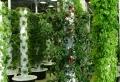 Vertikaler Garten – Ideen und Anleitungen zur Begrünung
